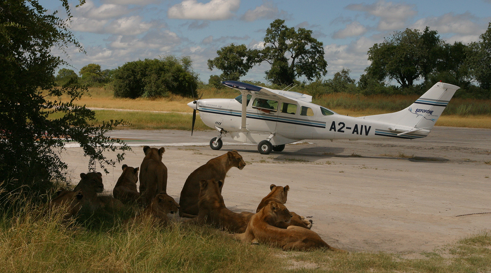 © Wilderness Air | Botswana