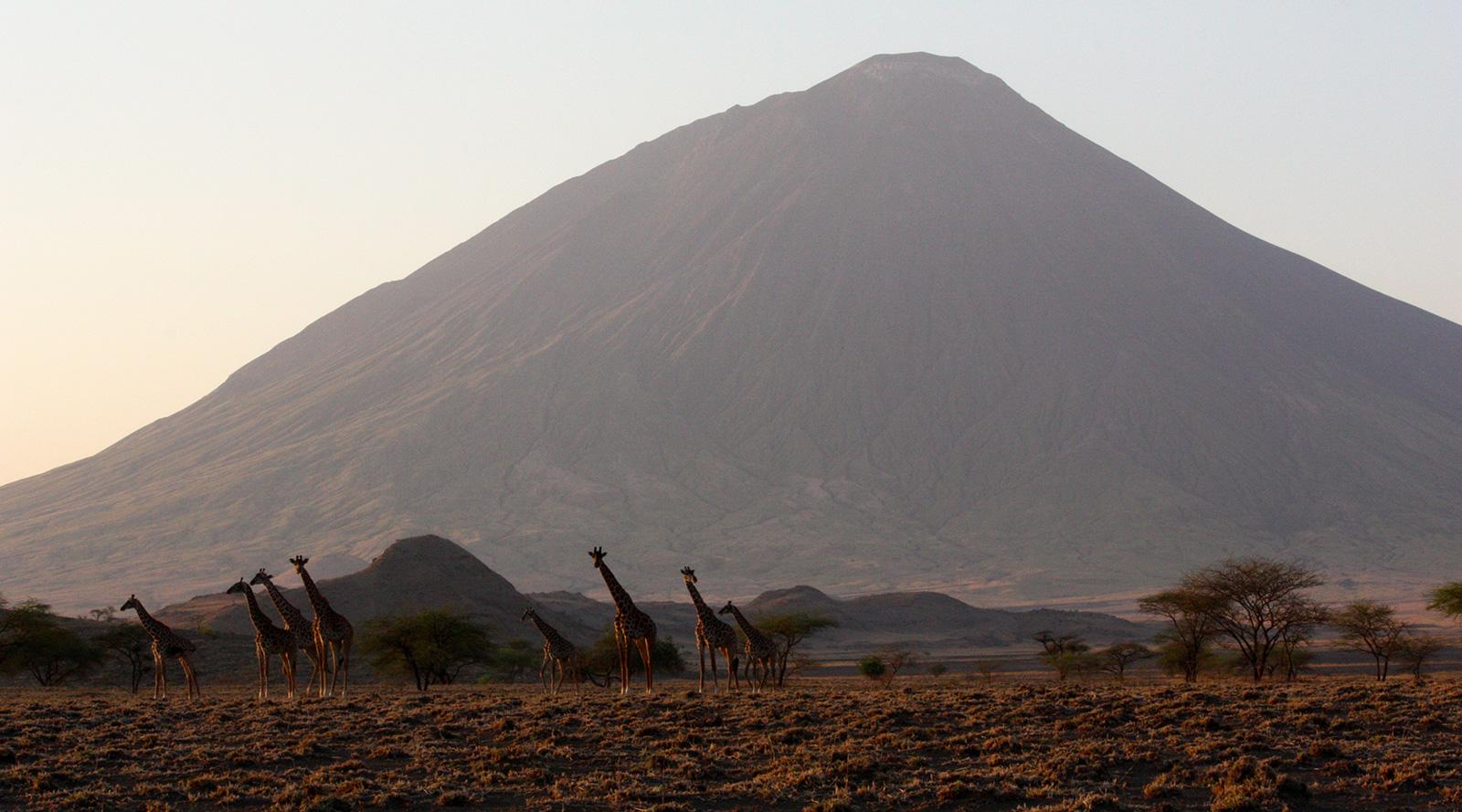 © Benedetta Mazzini | Ol Doinyo Lengai, Tanzania