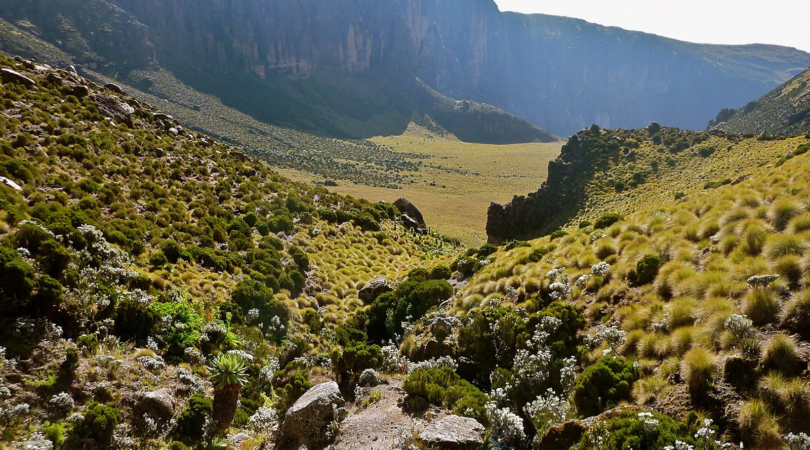 © Roberts Safaris | Vallata del monte Kenya, Kenya