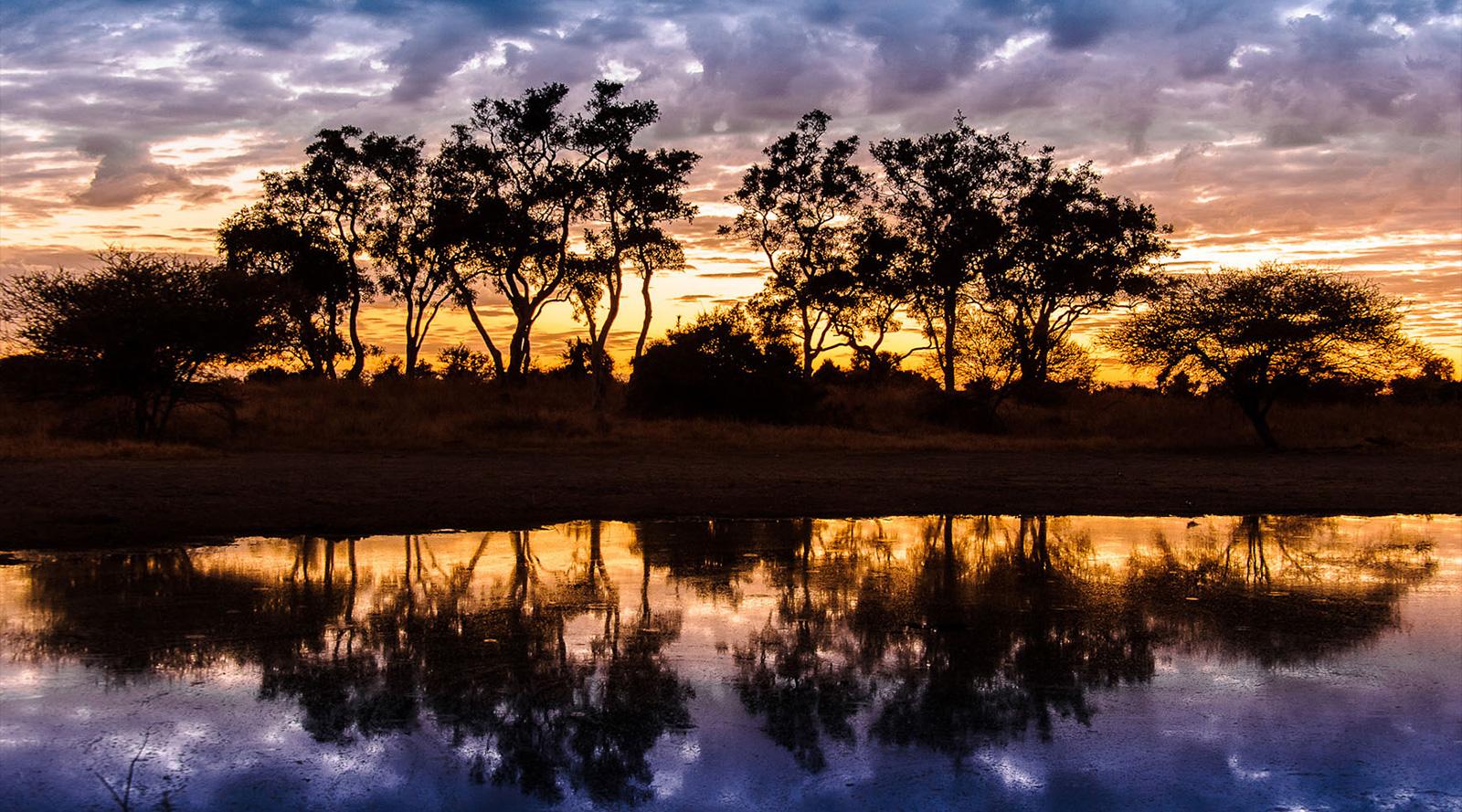 © Wilderness Safaris | Okavango Delta, Botswana