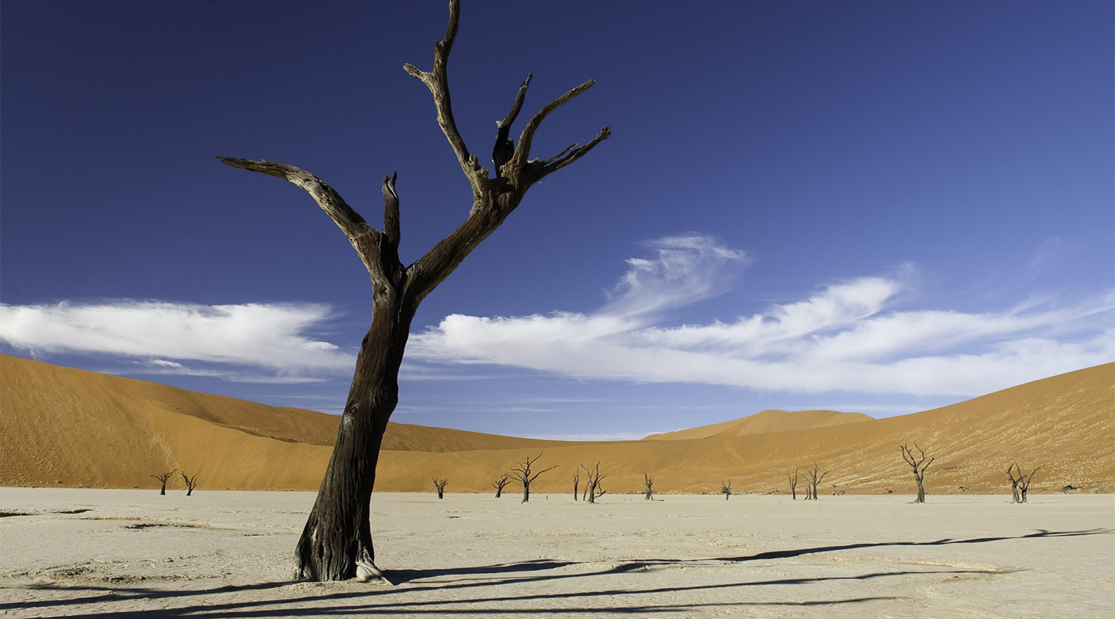 © Wilderness Safaris | Sossusvlei, Deserto del Namib, Namibia