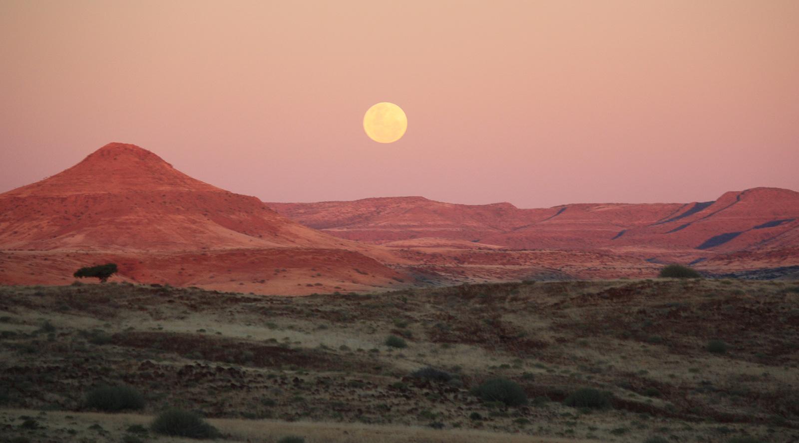 © Benedetta Mazzini | Damaraland, Namibia