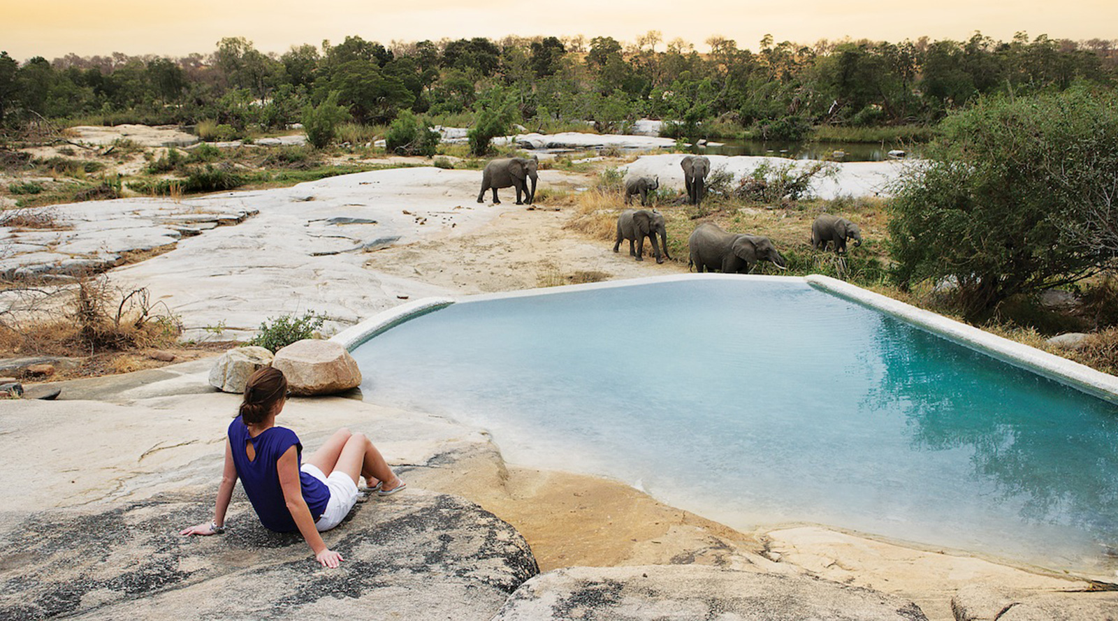 © Londolozi Private Game Reserve