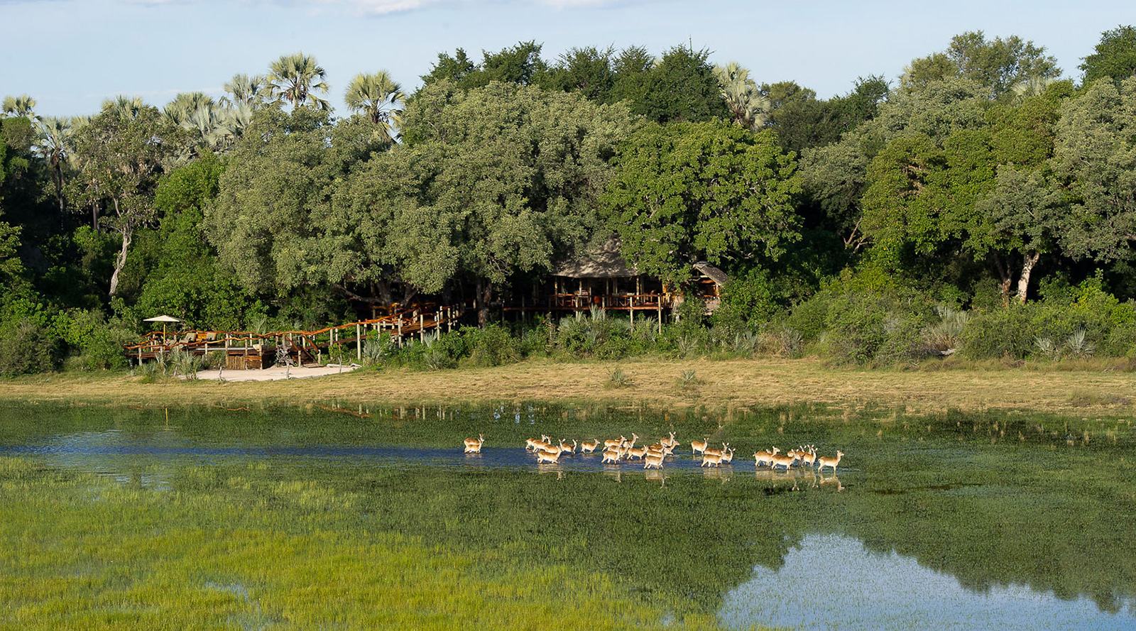 © Wilderness Safaris | Tubu Tree Camp, Botswana