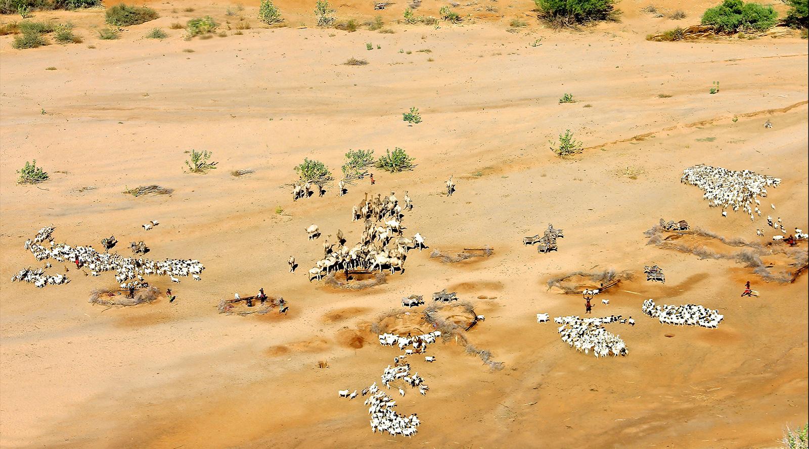 © Benedetta Mazzini | Melako,Kenya