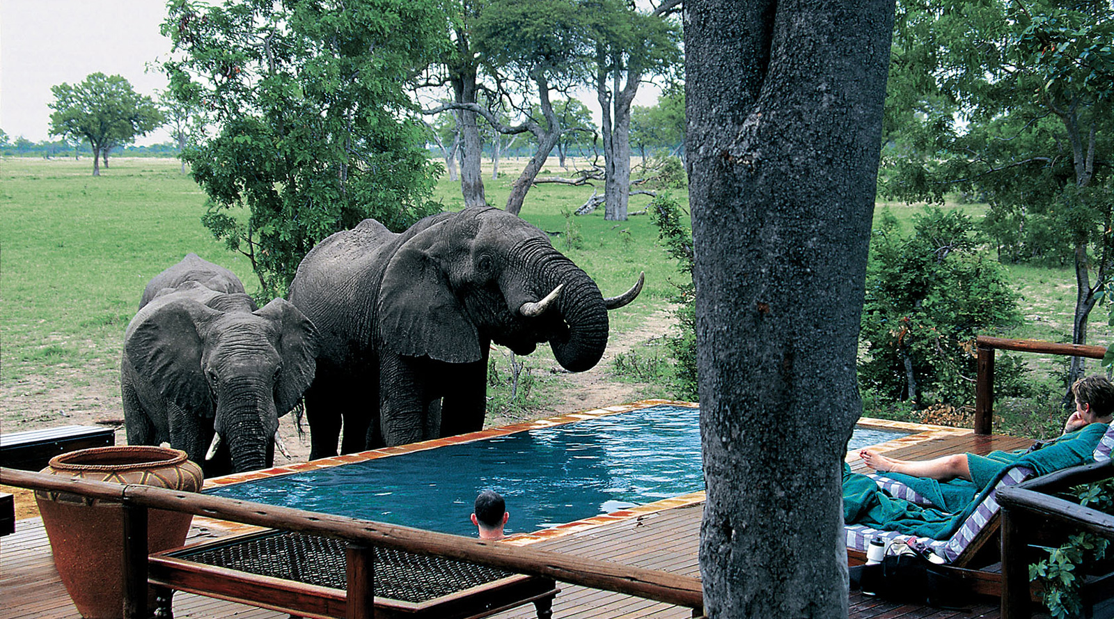 © Wilderness Safaris | Makalolo Plains Camp, Zimbabwe