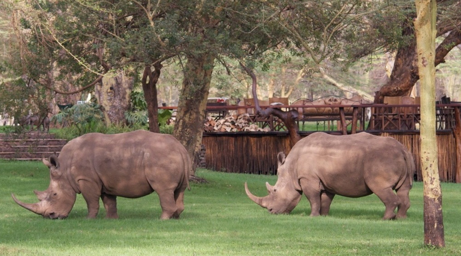 © Roberts Safaris | Sirikoi