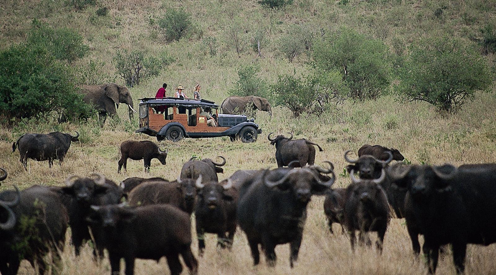 © Cottar's | Kenya